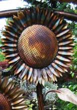 Sunflower Walk Gate